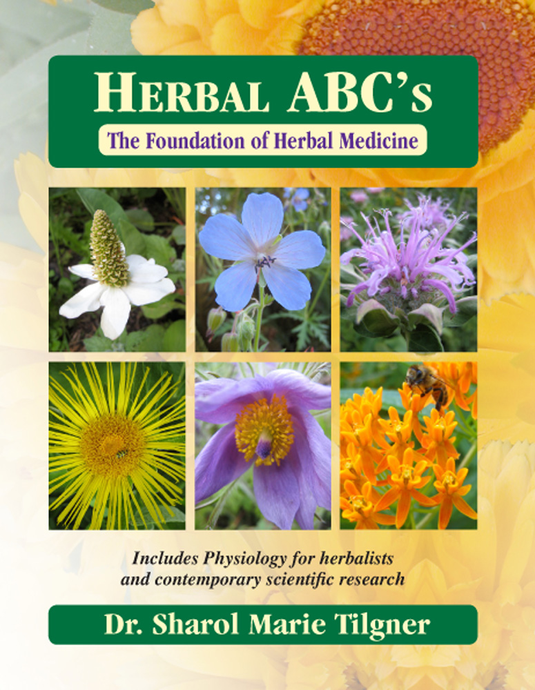 herbal abcs book cover